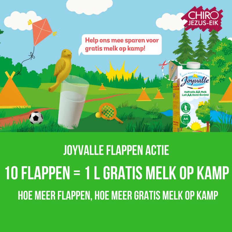 JOYVALLE FLAPpen actie-2
